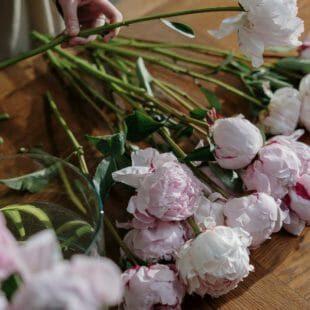 garden roses direct ships nationwide